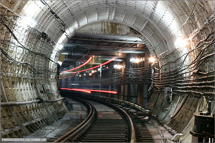 a train in its natural habitat