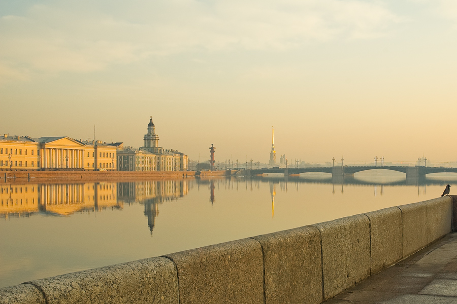 Morning crow | reflection, wharf, river, bridge, St. Petersburg, architecture