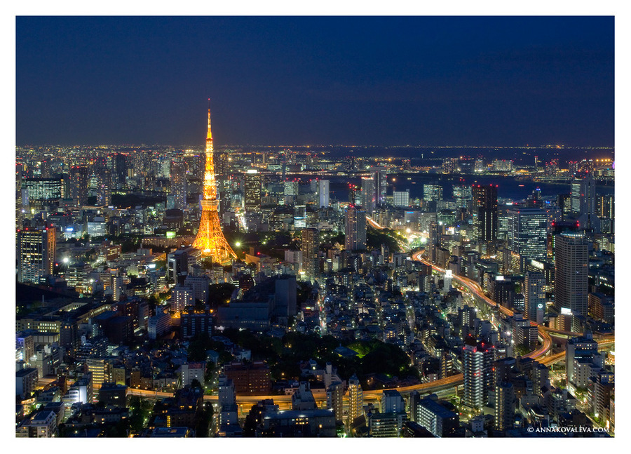 Tokyo. The tower.  | evening, view from the top, megalopolis, skyscraper, night, lights, panorama, Tokyo