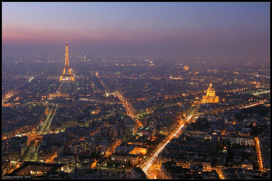 Paris: bird