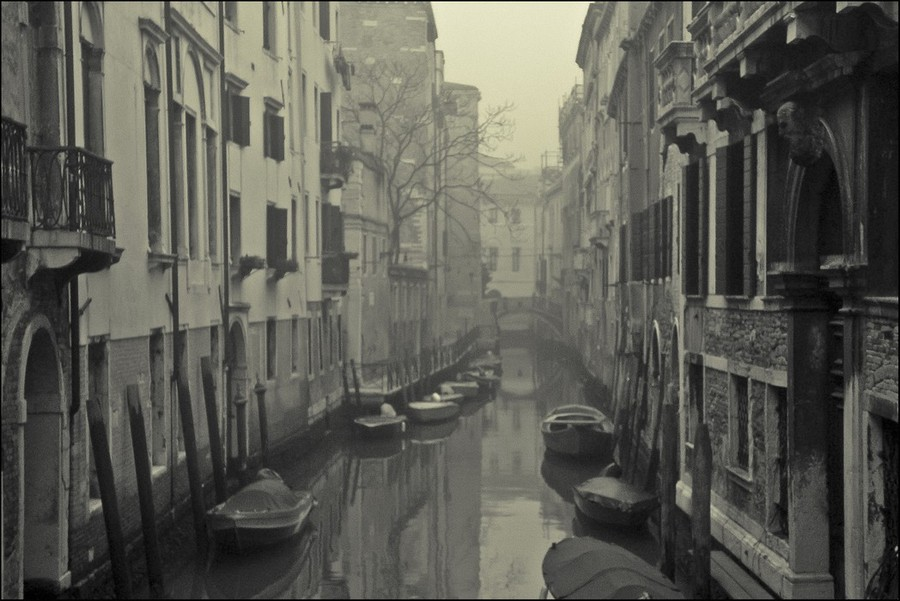 Tight Venetian fog