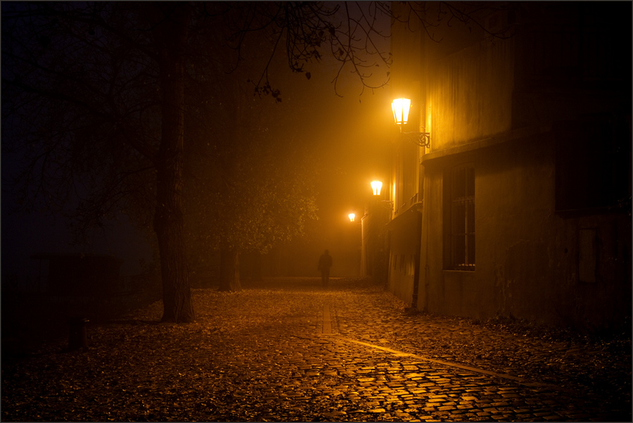 Evening mystique