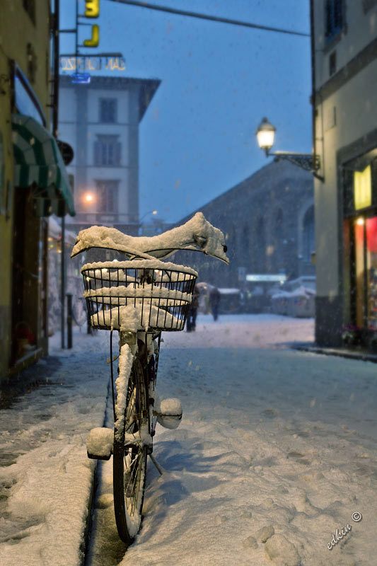 Frosen bicycle