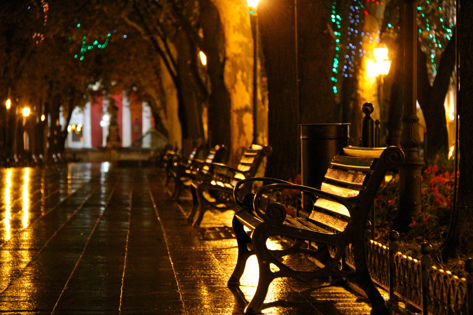 Evening alley | city, evening, dark, bench, trees, alley, lantern, light, urn, street