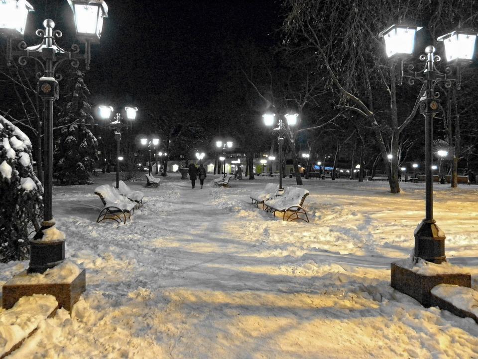 Winter night | winter, night, sniw, frost