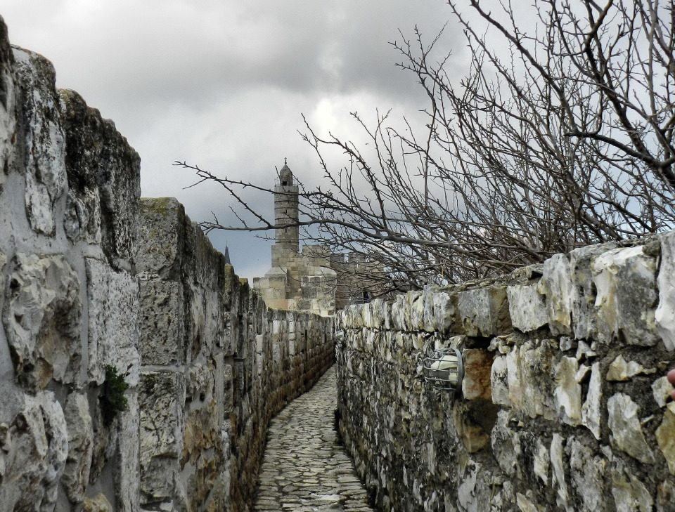 On the pathes of the eternity | path, old, building, stones, grey sky, clouds, branches, trees, city, cold