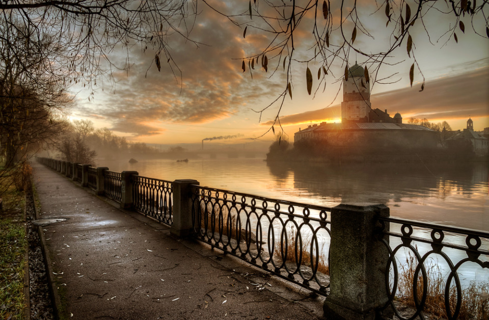 Foggy dawn by the river